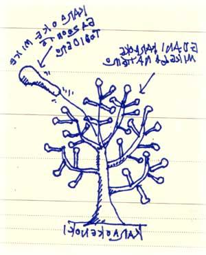 カラオケの木